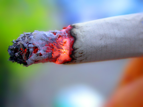cigarettes 10 Ways to Conserve the Environment